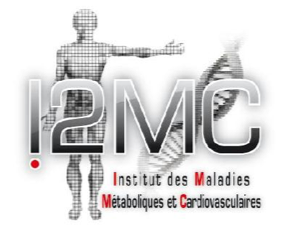 Post-doctoral position at I2MC-Toulouse (France)